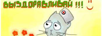 Опухоли у кошек