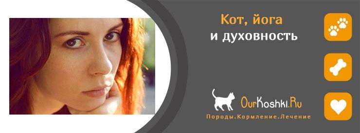 Кот, йога и духовность