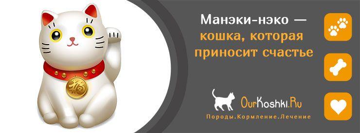Манэки-нэко — кошка, которая приносит счастье