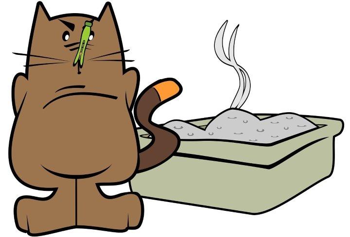 кошачий туалет и неприятный запах