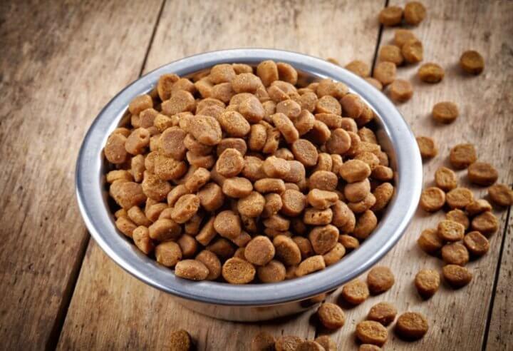 Выбор питания для кастрированных питомцев