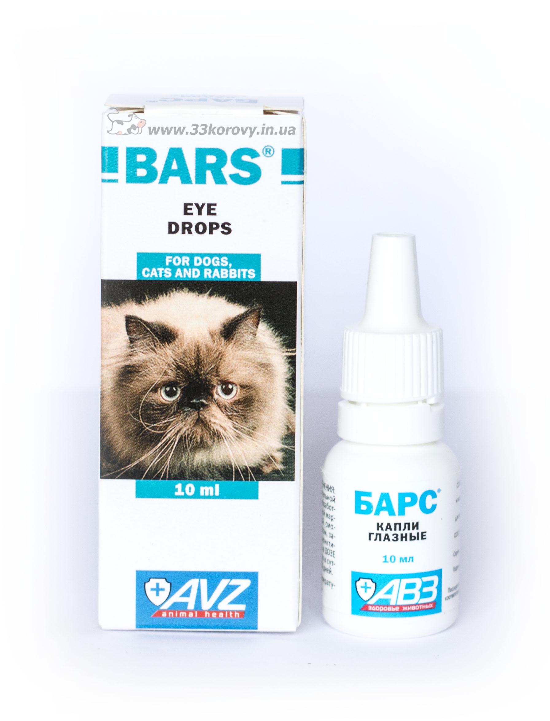 Барс оказывает мощное антибактериальное и противовоспалительное действие